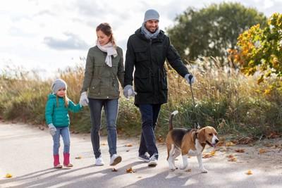 ビーグルと散歩する家族