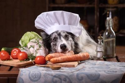 野菜とコック帽をかぶった犬