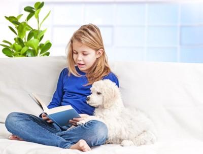 本を読む女の子と白い犬