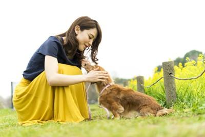 黄色のスカートの女性と愛犬