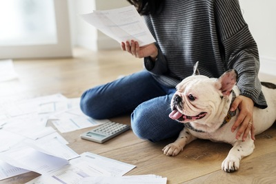 資料を見る人と犬