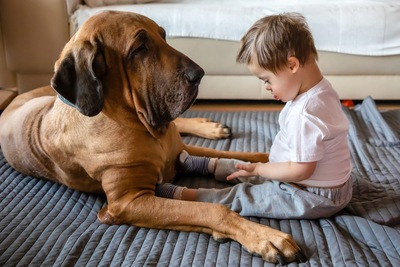 大型犬と遊ぶ子ども
