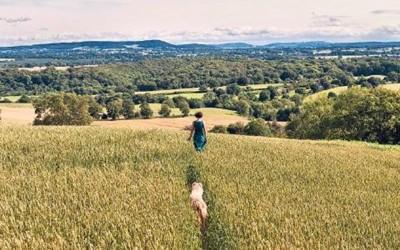 草原に犬と女性