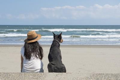 海を眺める女性と犬