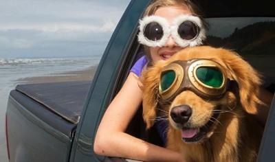 眼鏡をかけた女性と犬