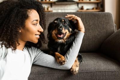 女性の腕に前足を乗せる犬