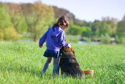 草原で女の子に寄り添って座る犬