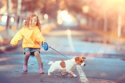 散歩をする幼い女の子と犬