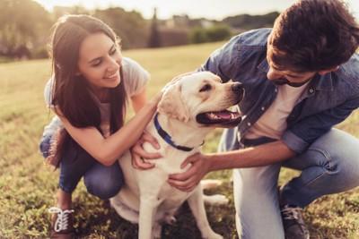 カップルに撫でられて嬉しそうな犬