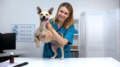 笑顔の獣医師と犬