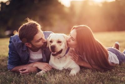 男性と女性にキスされる犬