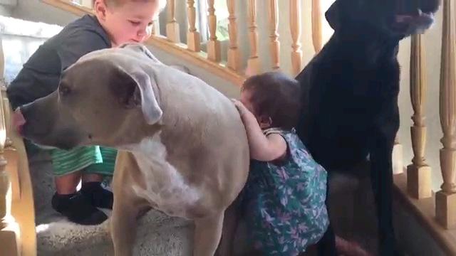 男の子と赤ちゃん