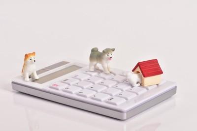 犬と家の小物と計算機