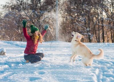 雪を投げて遊ぶ女性と犬