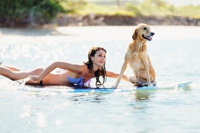 サーフボードに乗る女性と犬