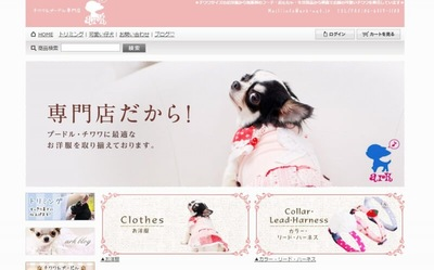チワワ&プードル専門店 Pethouse ark(ペットハウス アーク)のキャプチャー画像