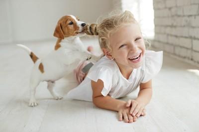 女の子の髪を噛む子犬