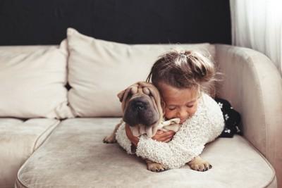 ソファーの上で子犬をハグする子供