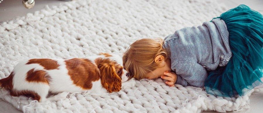 うずくまる子供と犬