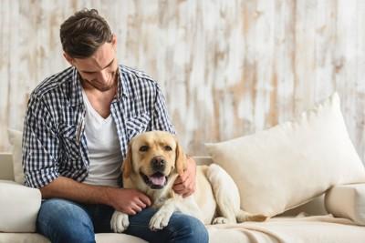 男性に寄り添ってソファーでくつろぐ犬