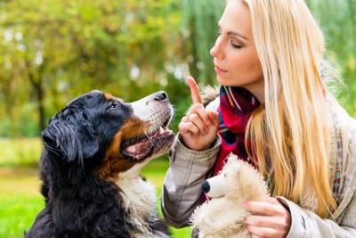 金髪の女性と犬