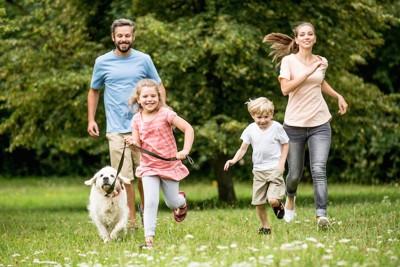 犬と一緒に草原を走る家族