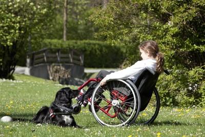 車いすの女の子と介助犬