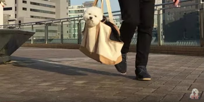 かばんの中のわたまるくん