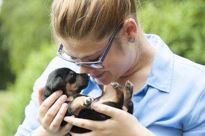 女性に抱っこされている黒×茶のジャックラッセルの子犬