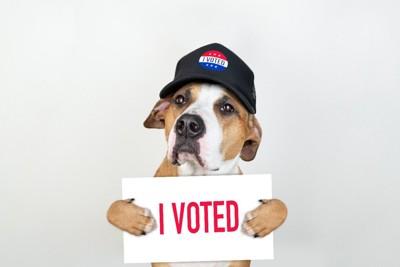 投票済みサインを持つ犬