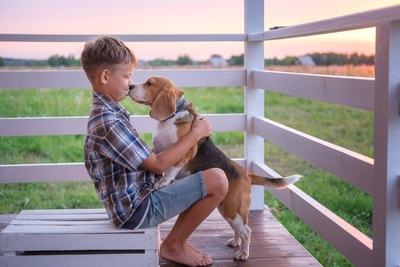立って男の子の顔を舐める犬