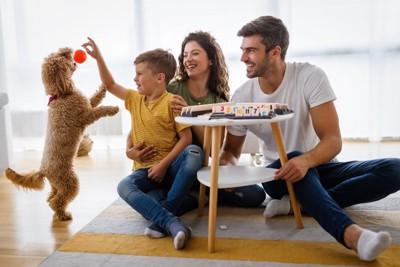 楽しそうに遊ぶ犬と家族