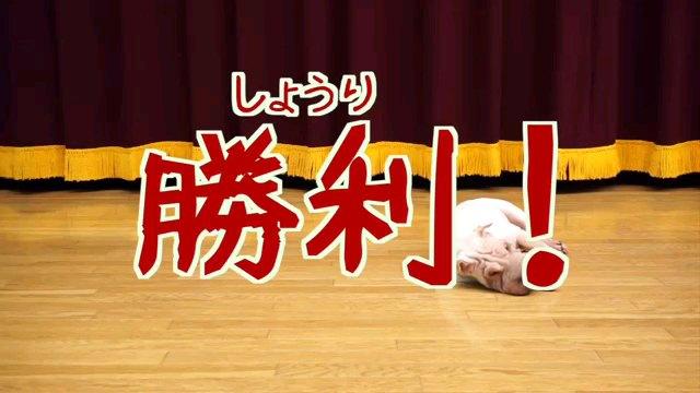 勝利!~字幕