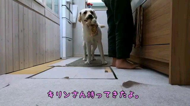 キリンさん~字幕
