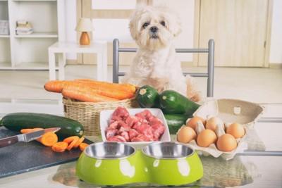 大量の野菜と犬