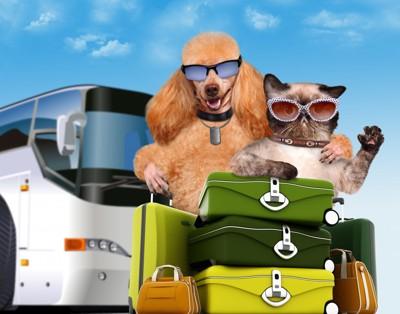 愛犬と愛猫と一緒にバス旅行!