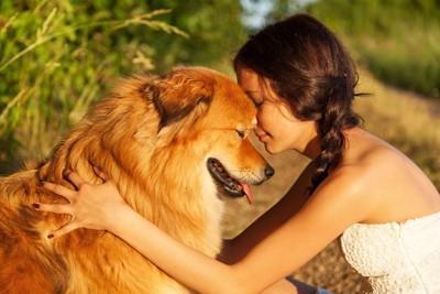 人と犬が向き合っている