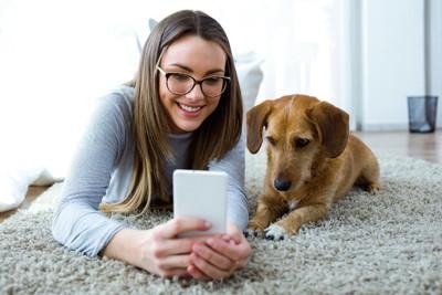 犬と一緒にスマホを見る女性