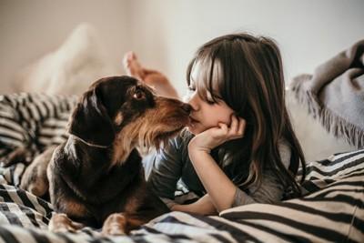 女の子とキスする犬、口回りが長毛