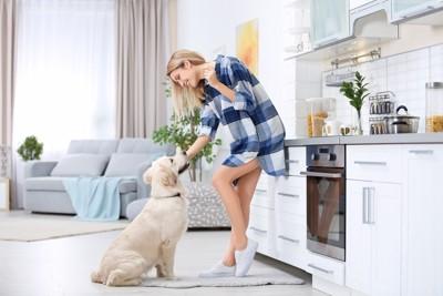 キッチンにいる女性と犬