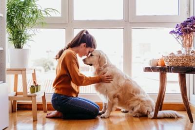 おでこをくっつける女性と犬