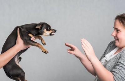 抱えられた威嚇する犬を怖がる女性