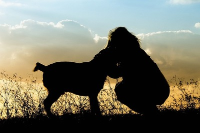 抱き合う犬と飼い主