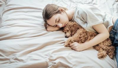 飼い主と一緒にベッドで眠る犬