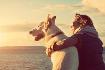 犬の肩を抱いて景色を眺める女性