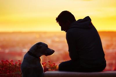 朝日をバックにした犬と男性のシルエット