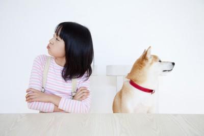 喧嘩する少女と柴犬