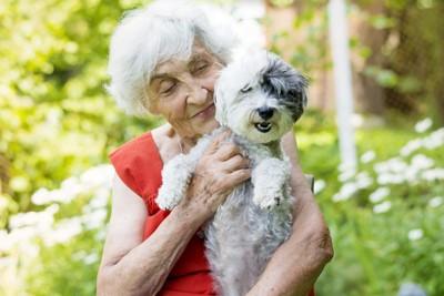 老婦人と犬