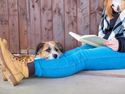 本を読む女性の足元でくつろぐ犬
