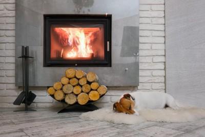 暖炉の前で寝る犬